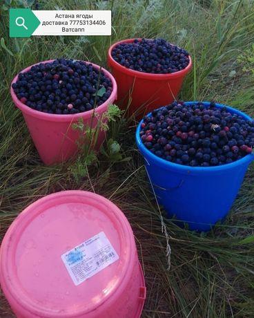 Дачная бесплатно доставка ягоды дачная местная сад ирга ерга смародина