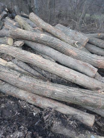Lemne de foc salcam și stejar