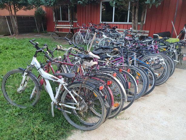 Biciclete import germania în regim angro En gross