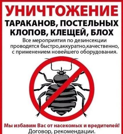 Уничтожение насекомых и грызунов быстро и качественно