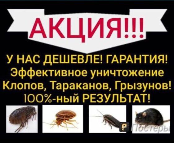 Дезинфекция 100% гарантия на уничтожение насикомых клопы термиты
