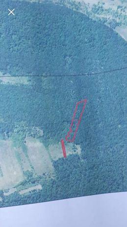 Vând teren și pădure 7087 m2 in zona Pestisul Mare