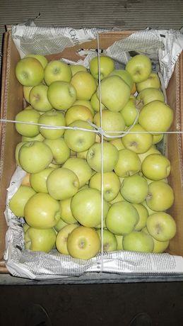 Яблоки Голден 130