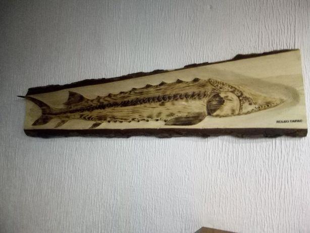 Осётр вырезанный на стволе дерева.