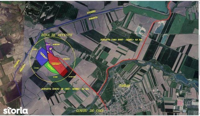 teren pentru balastiera zona Bors