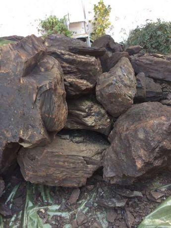 SUPER OFERTA DOAR 399 lei tona Carbuni pentru foc lignit