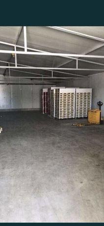 Servicii logistica depozitare hala depozit