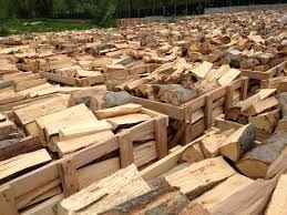 oferta lichidare de stoc lemne de foc esenta tare 300 lei m 1*1*1