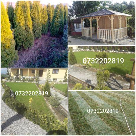 Amenajam grădini parcuri și spații verzi cu plante ornamentale etc