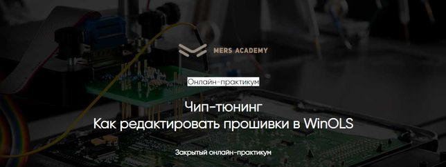 Курс 'Чип-тюнинг Как редактировать прошивки в WinOLS' Mers-academy