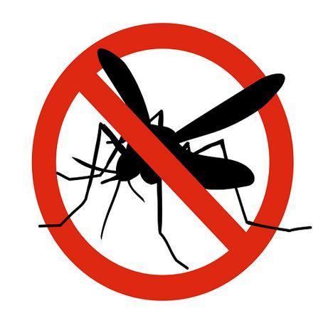 Plasa anti insecte / plase tantari / site tantari