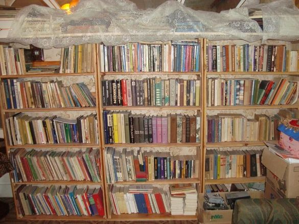 Книги цяла библиотека над 500бр
