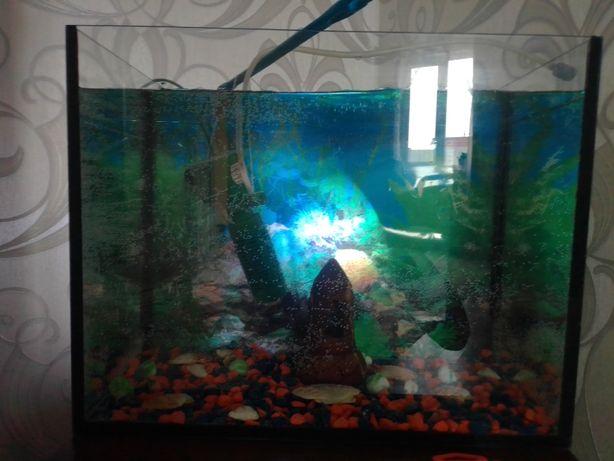 Продается аквариум срочно.