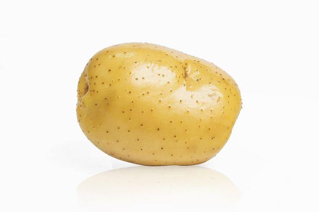 Продам домашний картофель165