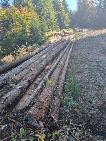 Vând lemne de molid pentru construcții cabane foișoare sau debitare