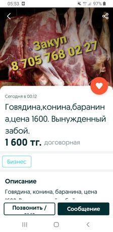 Мясо срочно продам