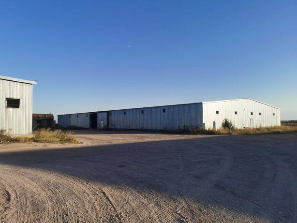Сдаётся специализированный склад под хранение лука.