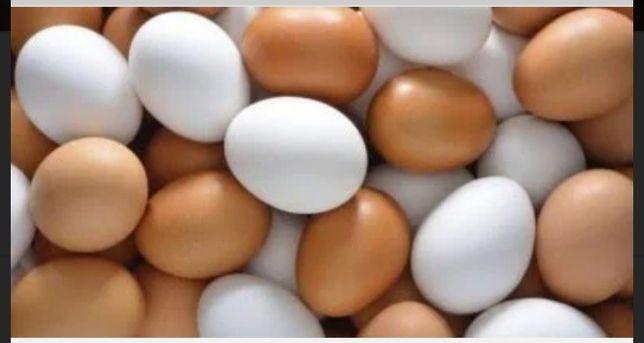 Домашние цветные яйца