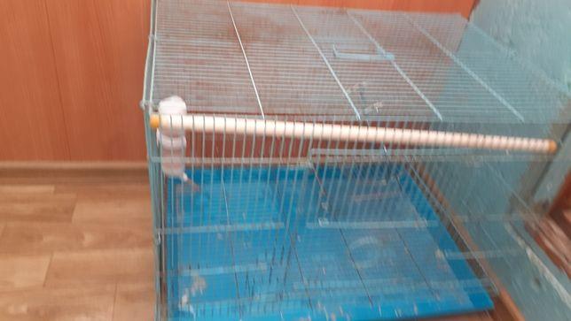 Продам клетки попугайчики грызуны