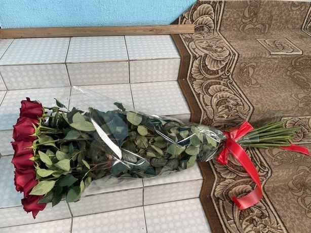 Розы метровые  25 штук