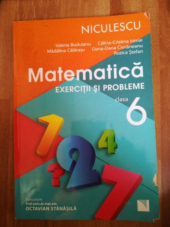 Culegere matematică clasa VI-a(6)
