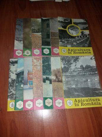Reviste vechi Romania apicola (apicultura , albine )