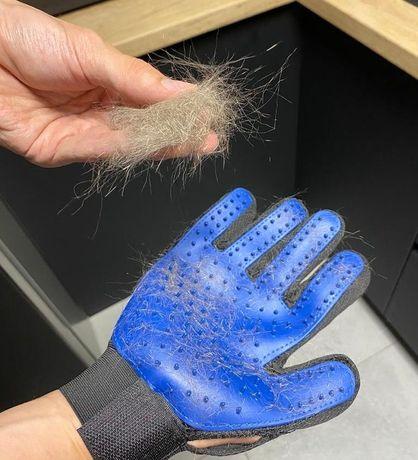 БЕСПЛАТНАЯ ДОСТАВКА!Перчатка для вычёсывания шерсти для кошек и собак!