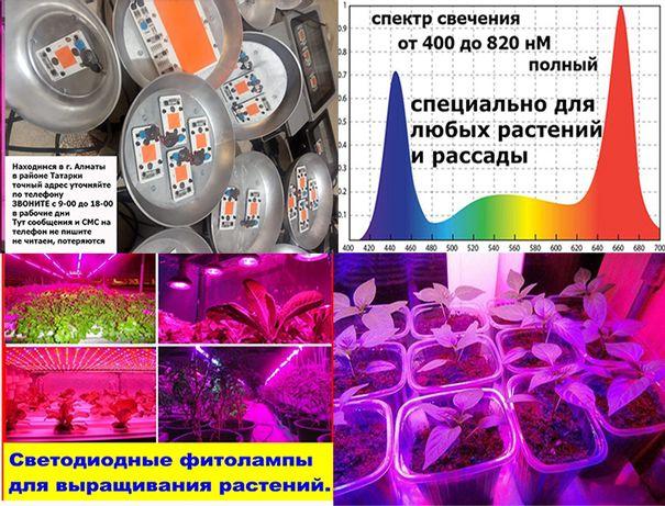 ФИТО-ЛАМПЫ лампочки линейные и подвесные фито-светильники для растений