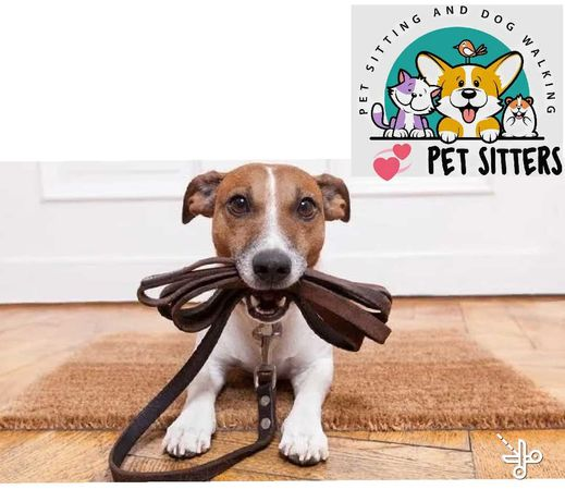 PET SITTING. walk and care for dogs and cats.