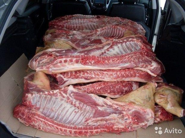 Продам мясо свинины,частями.