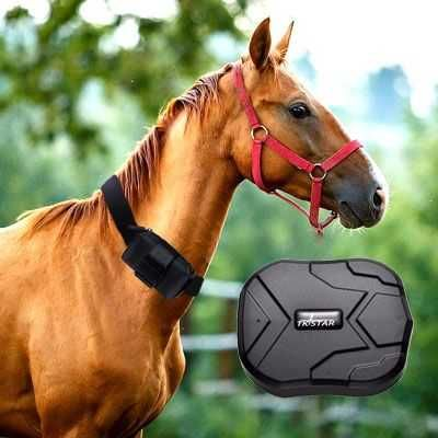 !!!GPS Трекер для Лошадей/Зарядка до 60 дней/АТЫРАУ ДОСТАВКА