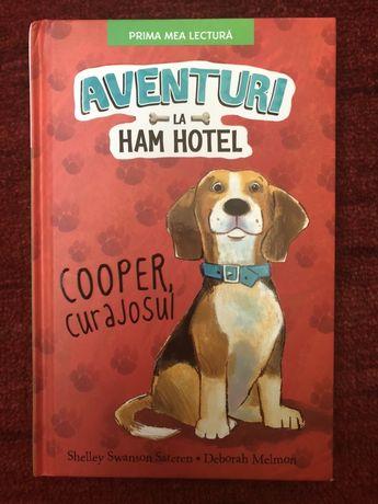 Aventuri la Ham Hotel.