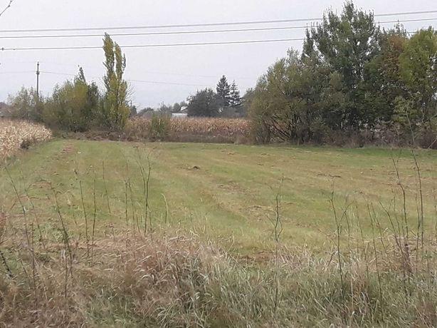 Vand teren in Vadu Moldovei