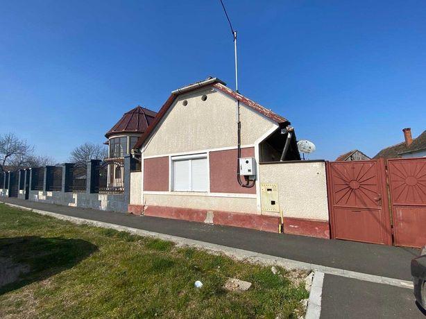 De inchiriat casa in Aradul Nou cu solar