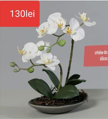 Orhidee din silicon