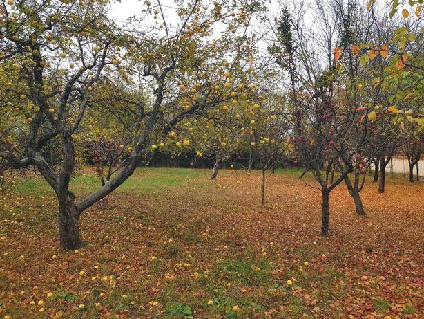 Teren în zonă liniștită ,Pucioasa-Motaieni