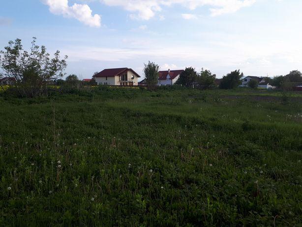 teren vanzare Serbanesti
