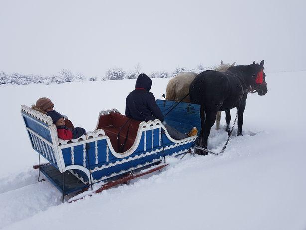 Sanie cai - Model Unicat în România