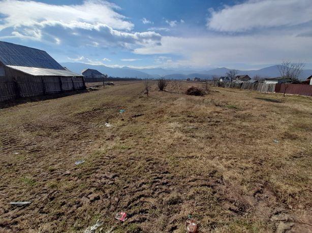 teren 7200 mp intravilan Piatra Neamț-Dumbrava Roșie