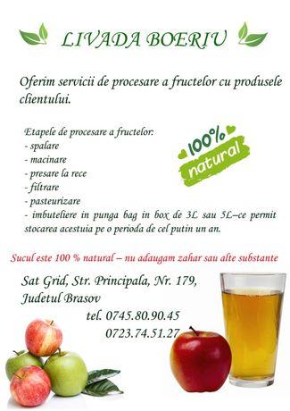 Suc de mere, pere, struguri Pasteurizare sucuri din fructe