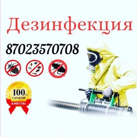 При заказе дезинсекции - дезодорация в ПОДАРОК!
