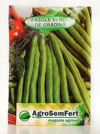 seminte de fasole fideluta pitica verde 50 grame, 500 grame