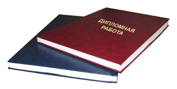 Дипломные работы и отчеты по практике (бух.учет и аудит, экономика)
