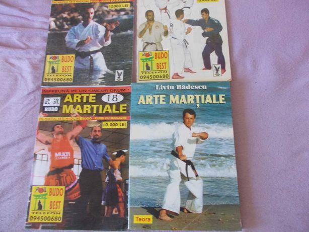 Arte martialeCarte