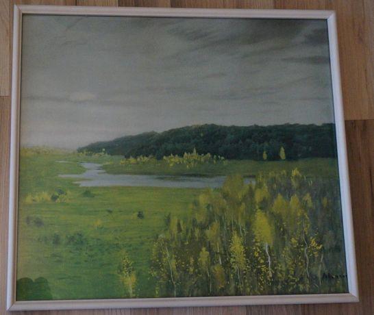 tablou pictura panza