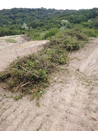 извозване на трева храсти клони разумните цени