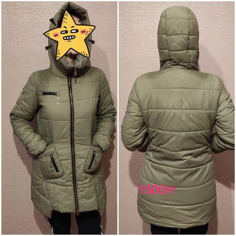 куртки осенние недорого
