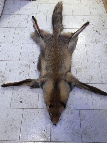 Кожа от лисица