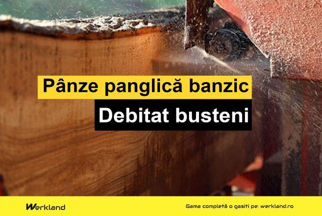 Panze panglica banzic busteni 4200x35x1.00x22.22 | Made in Germany