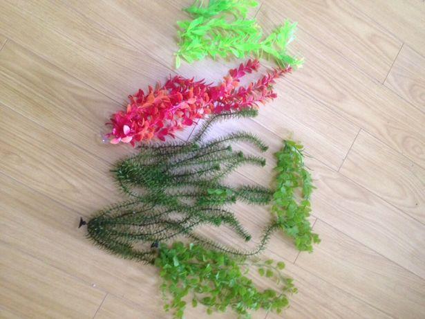 Plante din plastic pentru acvarii și accesorii - livrare gratuita